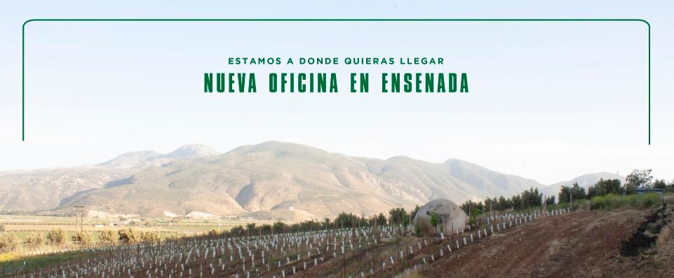 Inicio National Car Rental Mexico